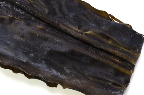 Kelp (Fucus Vesiculosus)