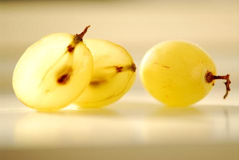 Grapeseed Oil (Vitis Vinifera)