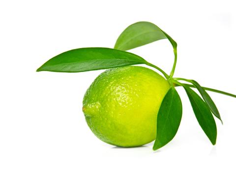 Lime Essential Oil (Citrus Aurantifolia)