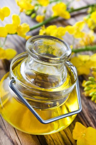 Rapeseed Oil (Brassica Campestris)